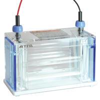Multiple Lane Gel Electrophoresis system