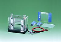 AE-6500 Dual Mini Slab with gel casting set